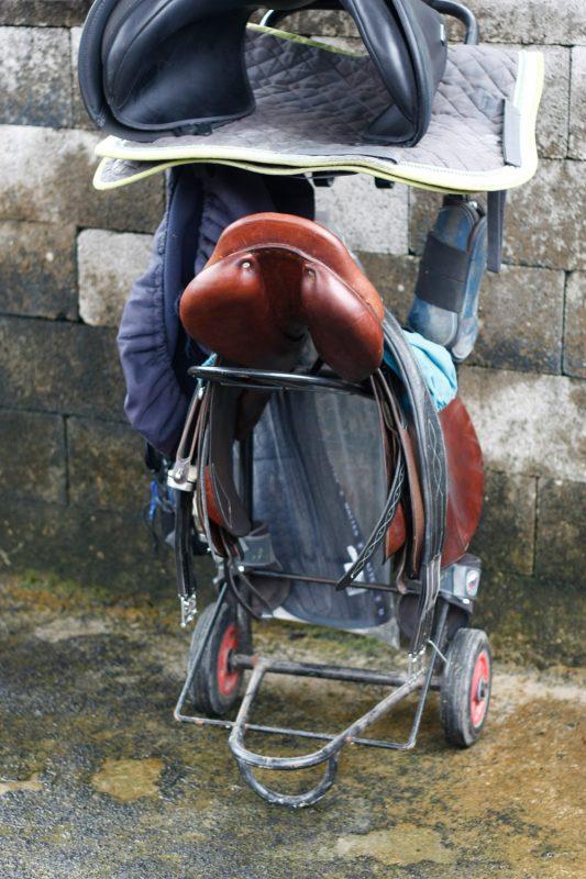 selles-essai-saddle-fitter