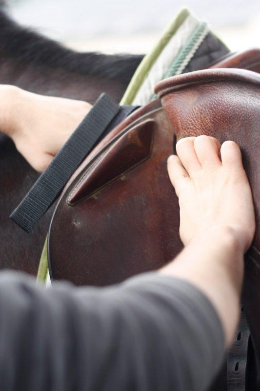 verification-attache-quartier-selle-saddle-fitter